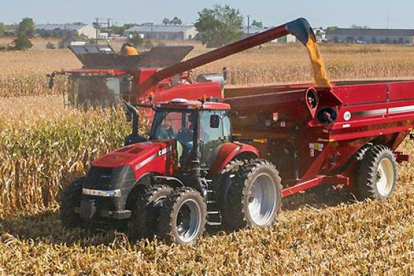 CroppedImage600400-4412N-Corn-Head.jpg