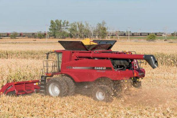 Case IH 4208 Corn Head » White's Farm Supply