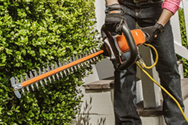 CroppedImage600400-Electric-Hedge-Trimmers.png