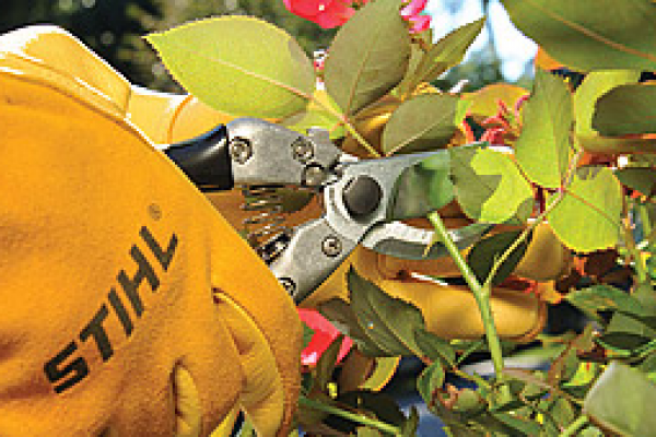 CroppedImage600400-Hand-Pruners.png